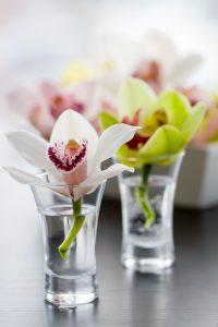 東京の婚活ブログサイト